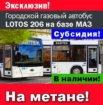 LOTOS 206